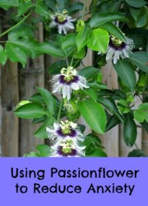 best passionflower supplement