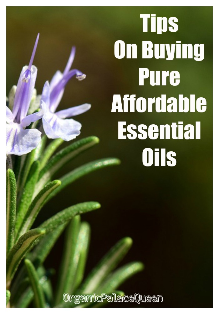 Finding quality essential oils
