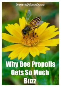 Honey bee propolis benefits