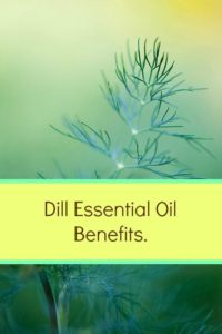 dill essential oil benefits