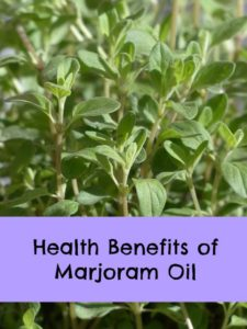 where to buy marjoram oil