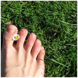 essential oils good for toenail fungus