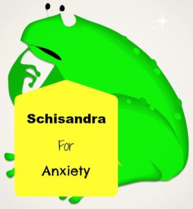 Schisandra for anxiety-min