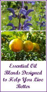 Ovvio essential oil blends-min