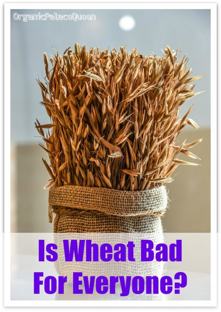 Is wheat bad for everyone