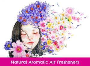 essential oils to freshen the air