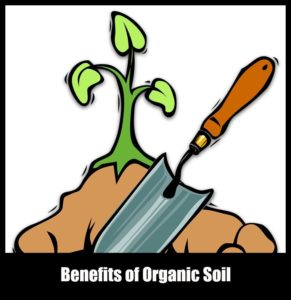 where to buy organic garden soil