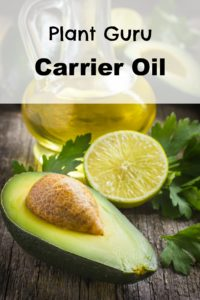 Plant Guru carrier oil