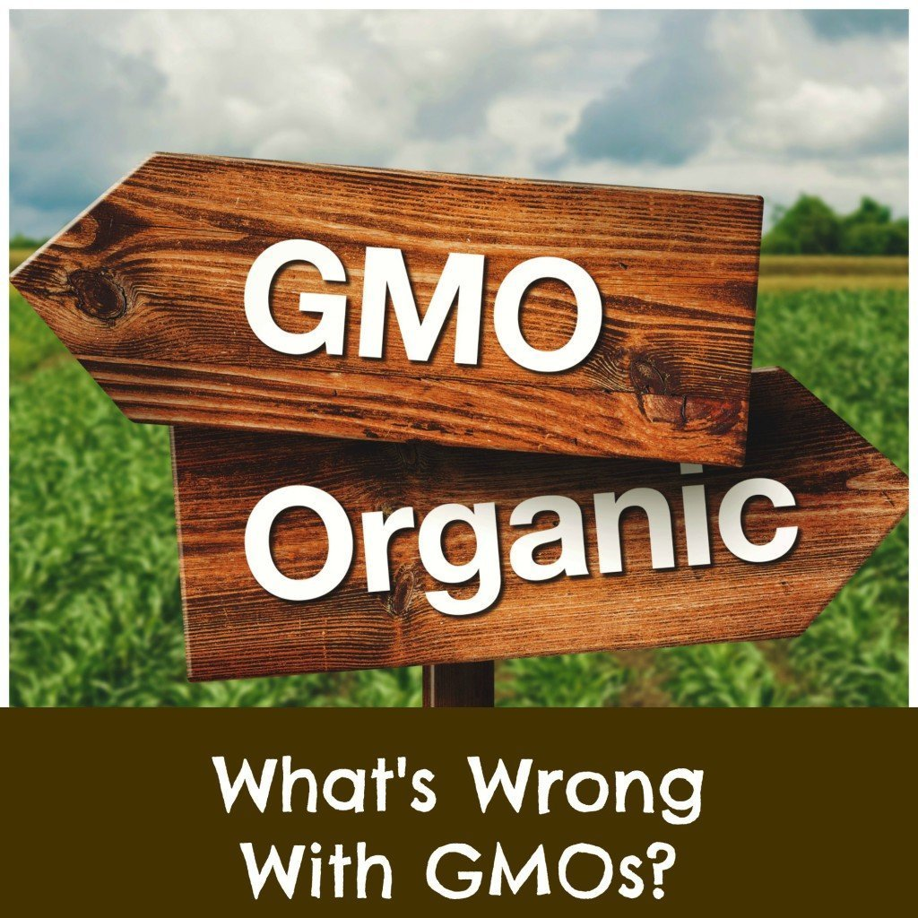 the problem with GMO foods