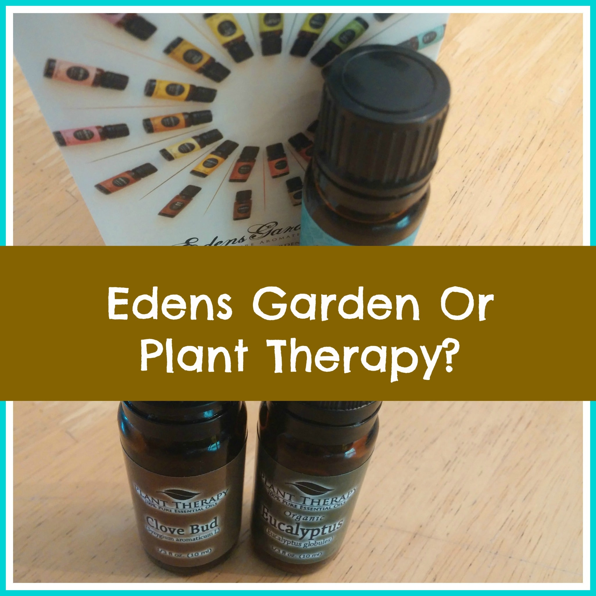 Edens Garden vs Plant Therapy Organic Palace Queen