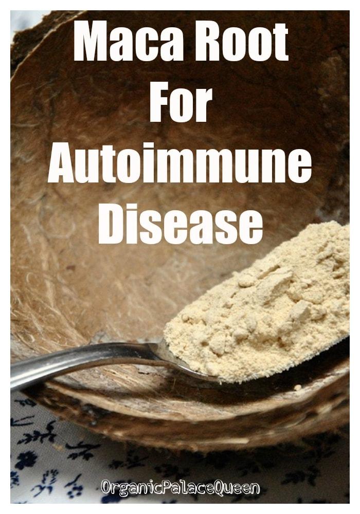 Maca root for autoimmune disease