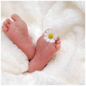 is shatavari good for fertility