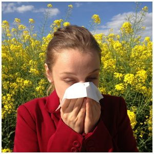 how to use essential oils for allergies
