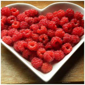 Elaine Gottschall specific carbohydrate diet