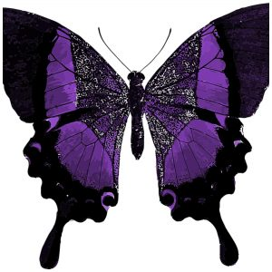 This playful butterfly t shirt is designed for people who love butterflies and for women battling fibromyalgia. The purple butterfly is the symbol of fibromyalgia awareness. This butterfly has just a hint of purple in its wings. Dare to be different.