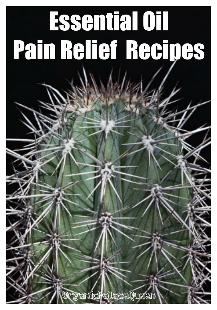 Essential oils for chronic pain recipes
