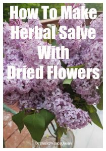 Simple salve recipe with dried flowers