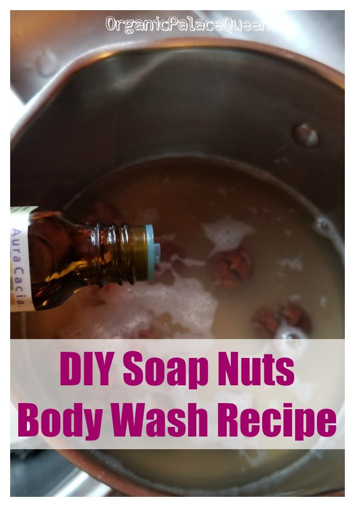 How to make soap nuts body wash