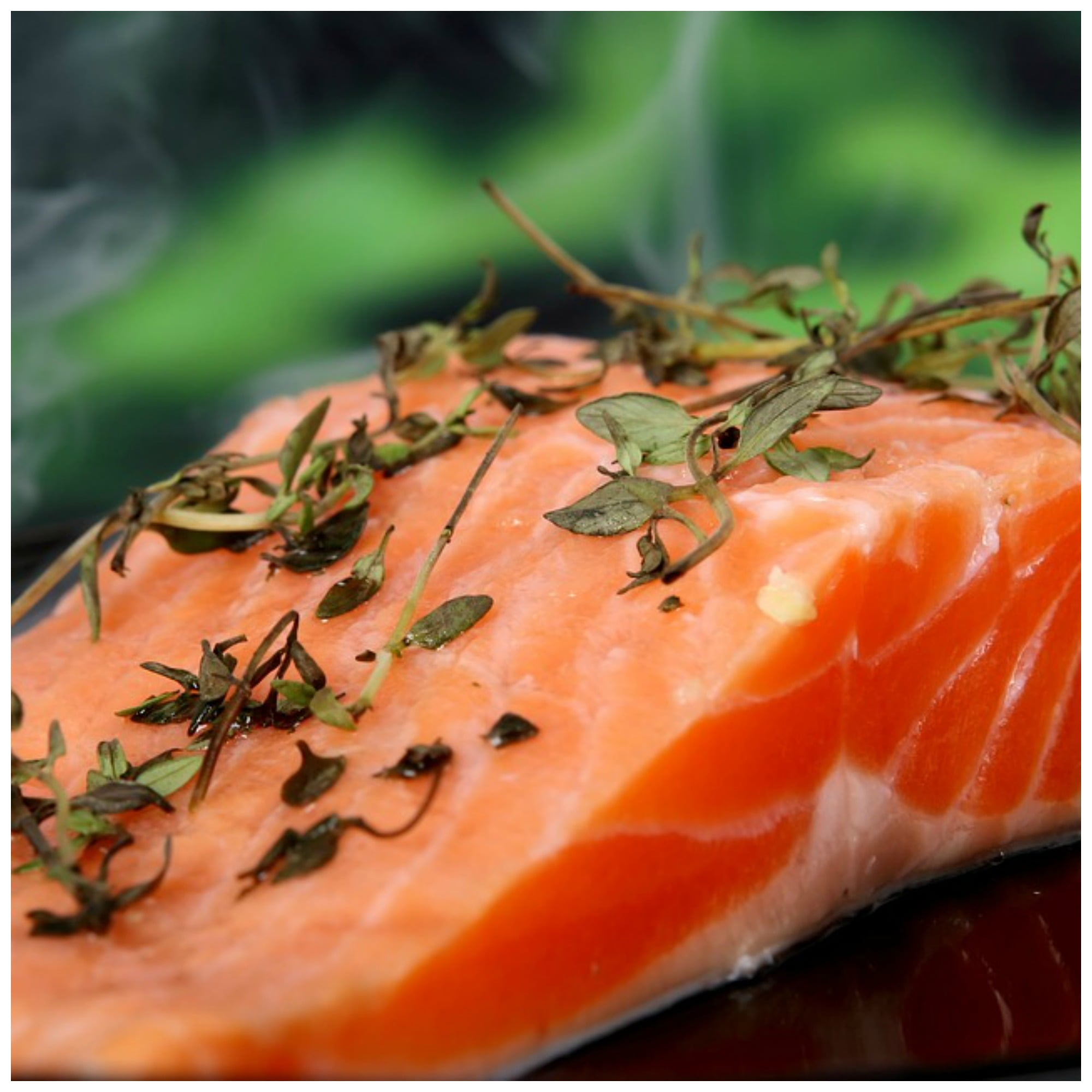 Why you must avoid farmed salmon