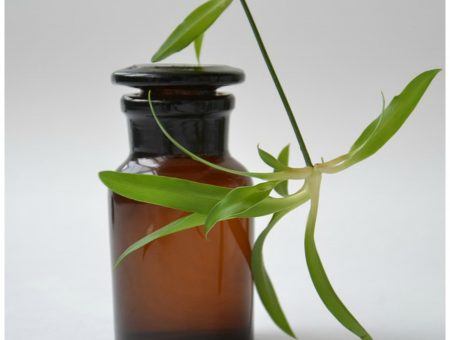 Why essential oil use is so contentious